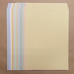 画像1: 角3/ECカラー100/基本カラー1色印刷/5,000枚